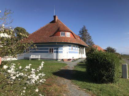 Die Insel Hiddensee mit Pferd und Fahrrad erleben. Fuhrmannshof & Fahrradverleih Hiddensee GBR