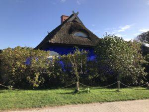 Die Insel Hiddensee mit Pferd und Fahrrad erleben.